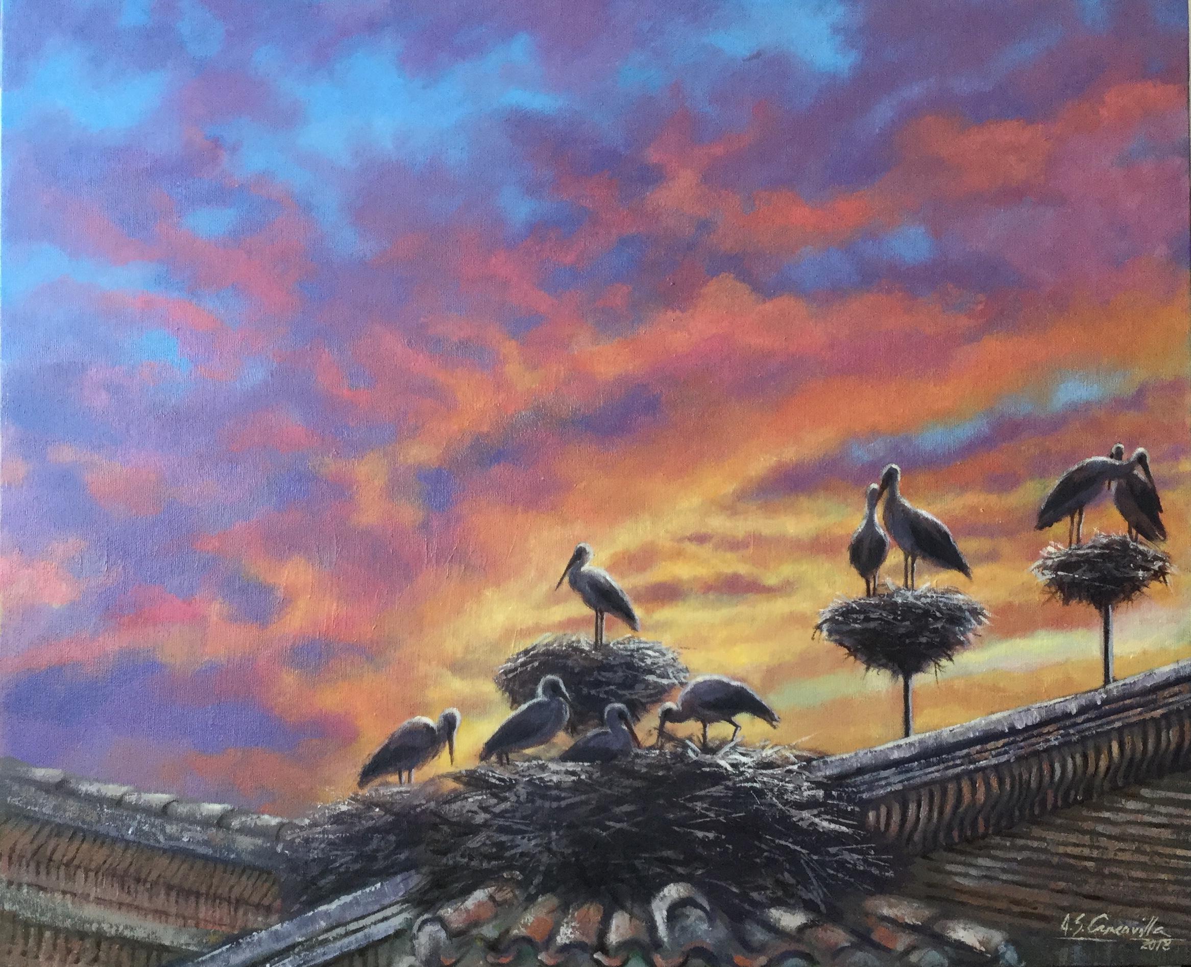 Cigüeñas en los tejados