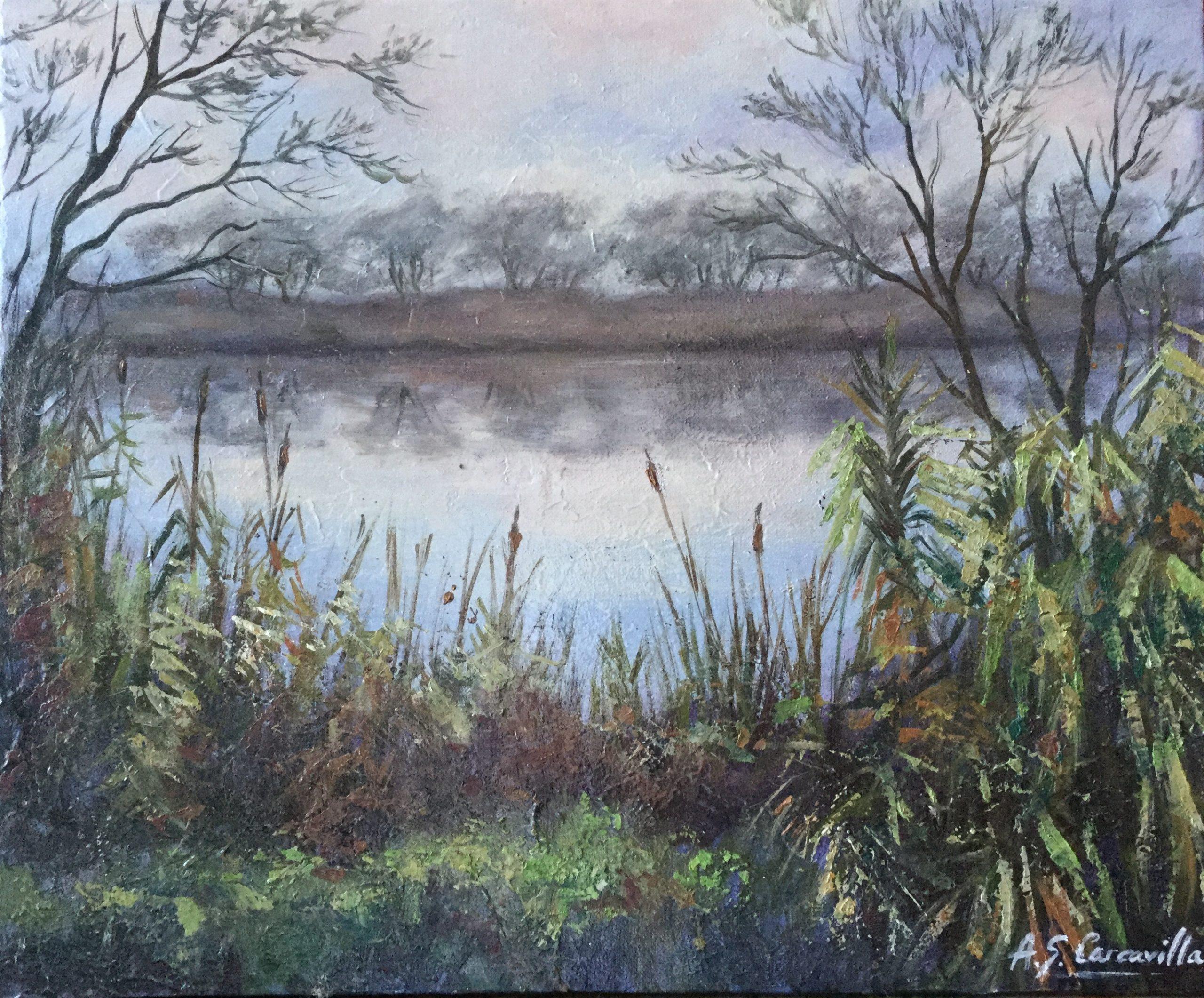 Orilla del Ebro en febrero II