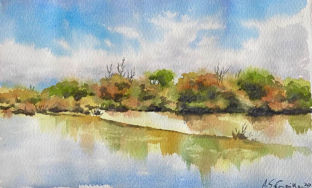 Reflejos del Ebro